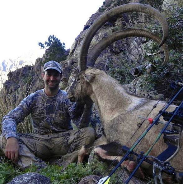 Florida Mountains ibex hunt - Mike Ponder archery hunt